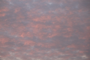 Sunrise Pink Skies copyright(c) JAN 2011, Kathy J Loh, All Rights Reserved