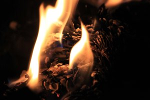 fire photo copyright(c)2011 K J Loh
